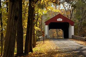 Top 10 Picture-Perfect Spots for Fall Engagement Photos in Bucks County | Partyspace