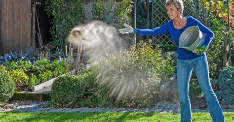 Garten Im Herbst Kalken by Rasen Kalken So Machen Sie Es Richtig Ideen Garten