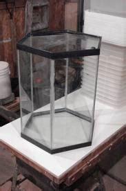 terra en verre octogonaux terrariumbois
