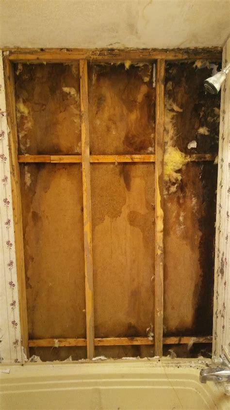 financial   remove black mold  repair walls