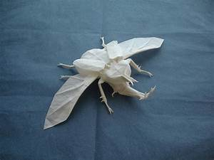 Daseyn origami beetle by shuki kato for Origami beetle by shuki kato