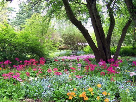botanical gardens ma berkshire botanical garden the cultural landscape foundation