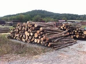 Stammholz Buche Preis : stammholz buche eiche hartholzmix 4m st mme als brennholz kaminholz in rauhenebrach holz ~ Orissabook.com Haus und Dekorationen