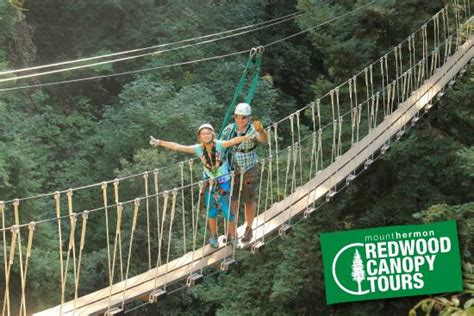 redwood canopy tours redwood canopy tour picture of mount hermon adventures