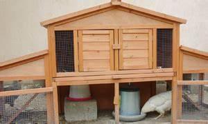 Comment Elever Des Poules : poules ~ Melissatoandfro.com Idées de Décoration