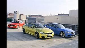 Color For Woodbine   Volvo 164 With A Bmw S62 V8 And M3