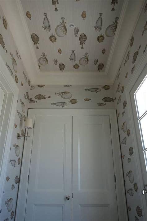 fornasettis wallpaper acquario  cole son annas