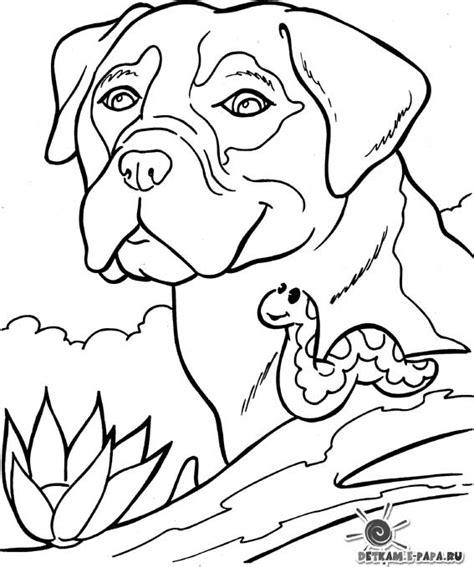 Bordeaux Kleurplaat by Malebog Tegninger Til Farvel 230 Gning Hund