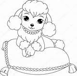 Poodle Drawing Toy Getdrawings sketch template
