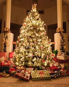 When should I put my Christmas tree up in Ireland? - Irish