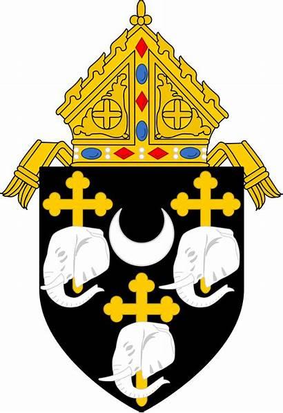 Diocese Camden Catholic Roman Svg Jersey Arms