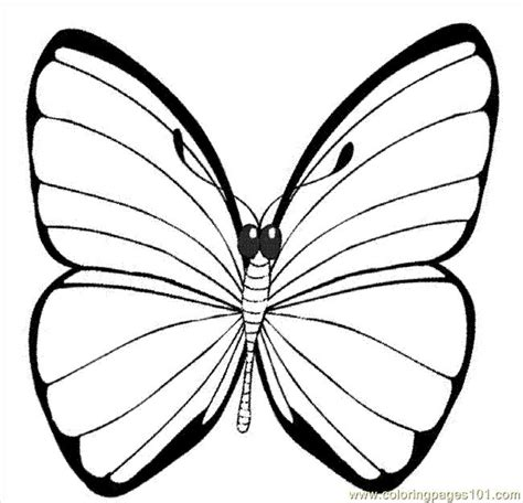 Coloring Images Of Butterflies by A Printable Picture Of A Butterfly Free Printable