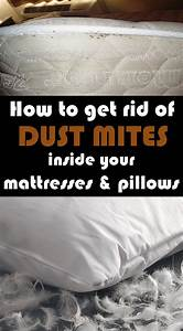 how to get rid of dust mites inside your mattresses and With bed bugs pillows getting rid