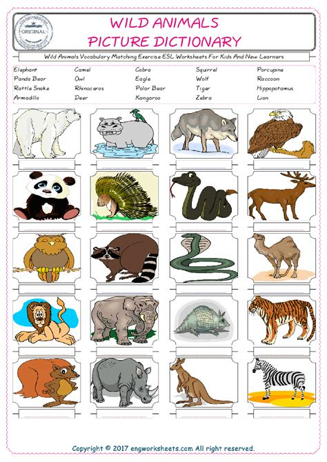 preschool circle  wild animals worksheet preschool