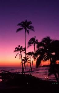 The 25 Best Sunset Beach Ideas On Pinterest Sea