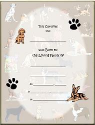 Best 25 ideas about blank birth certificate find what youll love dog birth certificate template yadclub Gallery
