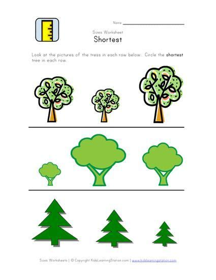 learning about sizes height worksheets curriculum pre k 434 | 74413ce121c756e3c20503954a972bc4