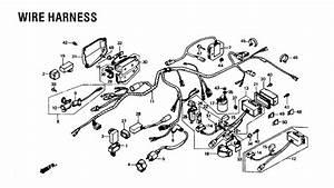 Honda Rancher 350 Carburetor Hose Diagram