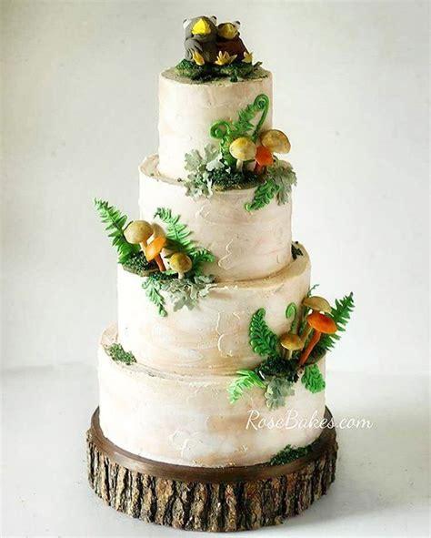 mushroom cake ideas  pinterest toadstool cake