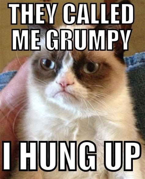 Grumpy Memes - called me grumpy grumpy cat meme