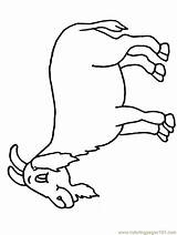 Goat Coloring Colouring Printable Sheet Sheets Goat2 Activity Cliparts Mountain Cartoon Clipart Printables Children Library Coloringpages101 Popular Animals sketch template
