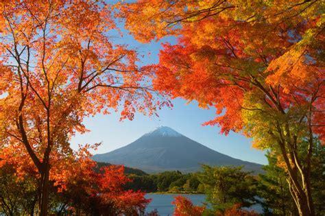 japan photo workshop