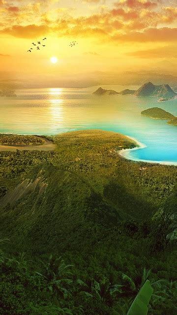 wallpaper rio rio de janeiro sunrise forest landscape