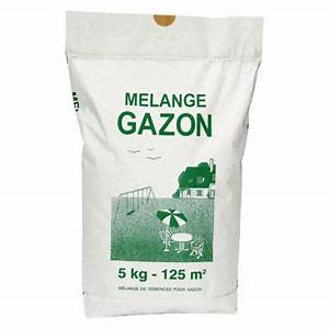Semer Gazon Periode : prix sac gazon a semer construction maison b ton arm ~ Melissatoandfro.com Idées de Décoration