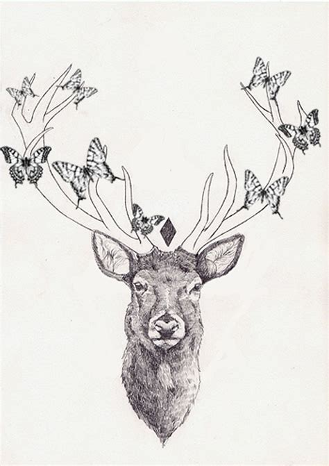 butterflies  deer head tattoo design