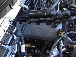 Mustang 5 0 Engine Cover Onto F-150
