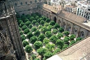 Patio De Los Naranjos Seville