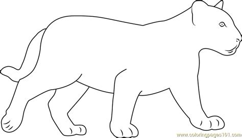 black baby panther coloring page  panther coloring
