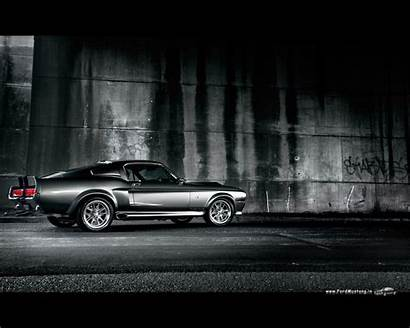 Shelby Gt500 Mustang Ford Wallpapers Wall