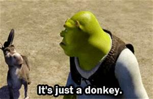 Shrek GIF - Find & Share on GIPHY