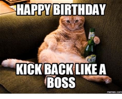Cat Happy Birthday Meme - best happy birthday cat meme