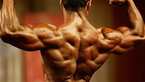 The Best Back Workout  A Matter Of Inches  U2013 Fitness Volt