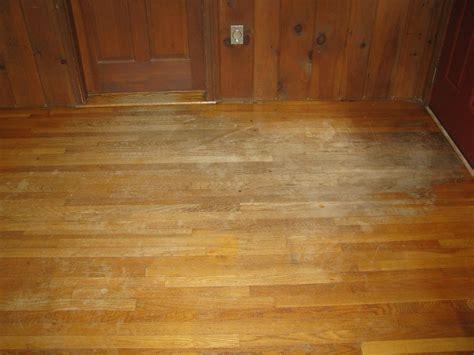 Sandless Floor Refinishing Reputation by Sandless Floor Refinishing Reviews Myideasbedroom