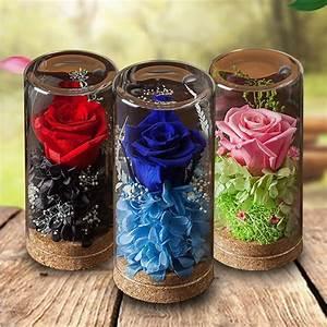 Rose In Glas : preserved rose glass apollobox ~ Frokenaadalensverden.com Haus und Dekorationen