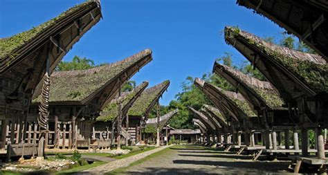 objek wisata tana toraja tempat wisata terbaik  sulawesi