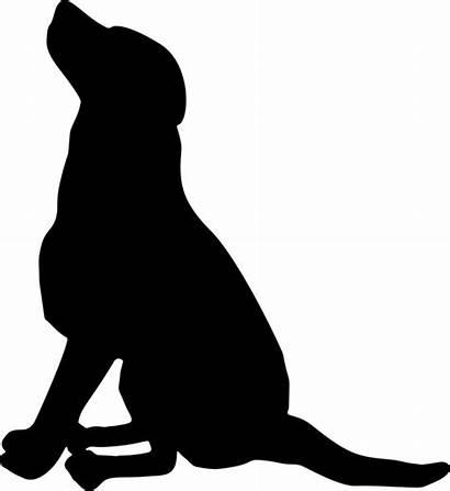 Silhouette Clipart Sitting Retriever Puppy Pet Labrador