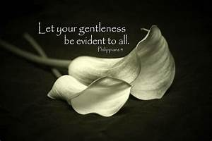 Gentleness | Quotes, thoughts and musings