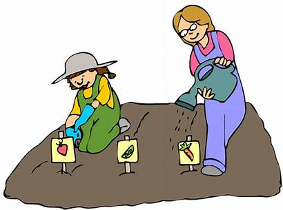 Seeds Planting Clipart Sow Sowing Plant Watering