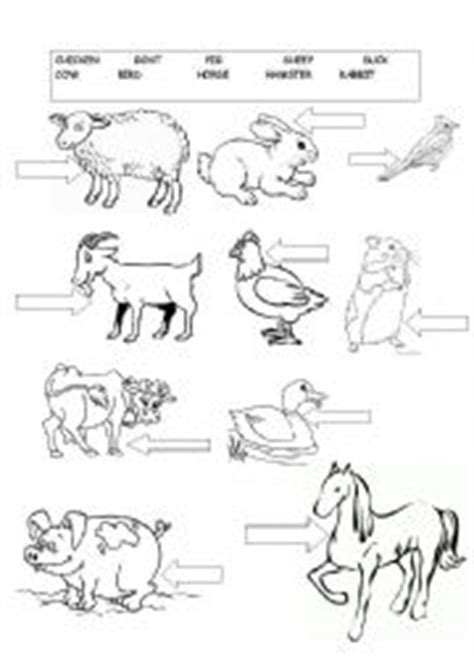 farm animals esl worksheet  enea