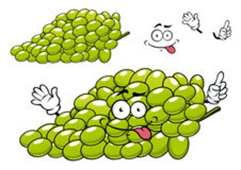 funny bunch  grapes smiling character stock vector
