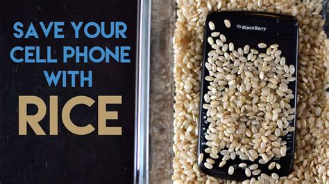 iphone in rice how long what can you use other than rice to dry out a iphone Iphon