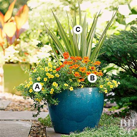 Simple Sunny Container Garden