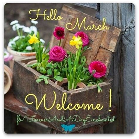 Hello March Welcome Pictures, Photos, and Images for ...