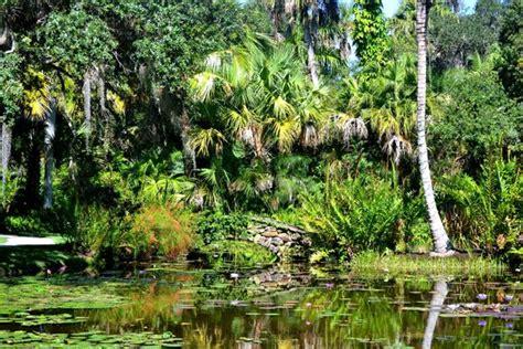 foto de mckee botanical garden vero congo rojo