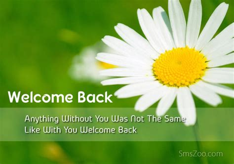 Welcome Back Sms Messages For Friends