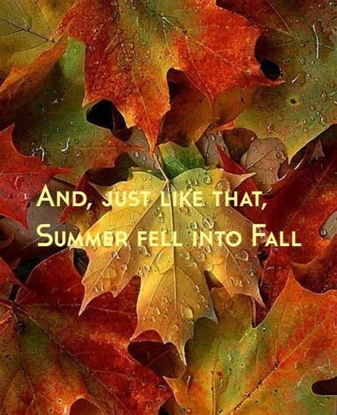 And Just Like That Summer Fell Into Fall Pictures, Photos